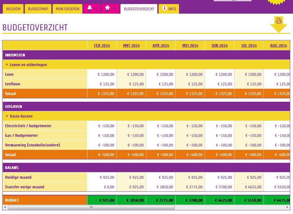 Budgetmap budgetoverzicht